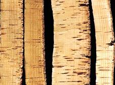 El corcho materiales - Planchas de corcho ...